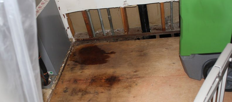 Water Damage? 3 Things You Want to Know About Drying Out